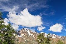 Trentino - Pejo valley on summer