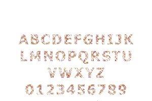DNA alphabet