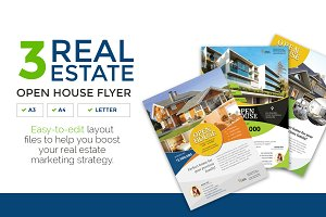 3 Clean Real Estate Flyer Vol.2