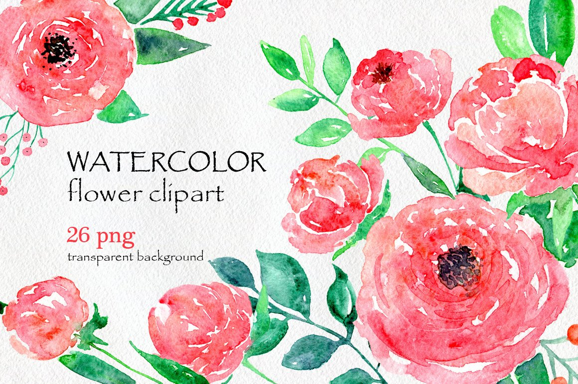 Watercolor flower peony 26 in set graphics creative - High resolution watercolor flowers ...