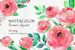 Watercolor flower peony, 26 in set
