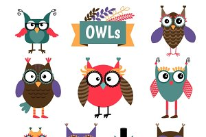 Owl coloured icons