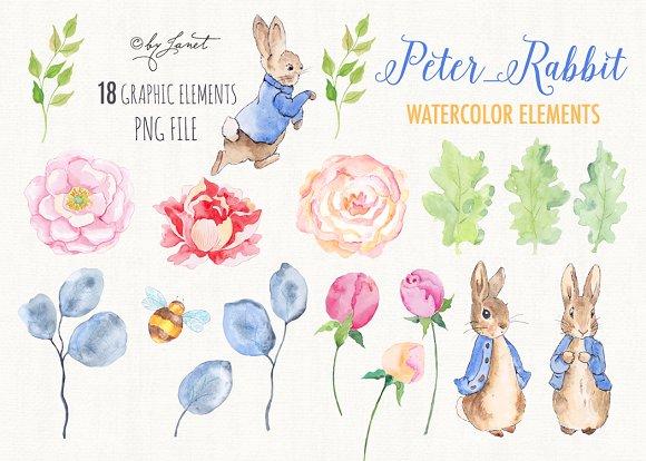 Mr Rabbit Watercolor Clipart Illustrations Creative Market