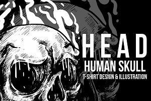 Head Human Skull Illustration