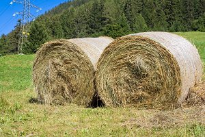 two hay bales