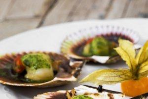 Seafood on shells served