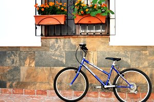 bike and window with flowers