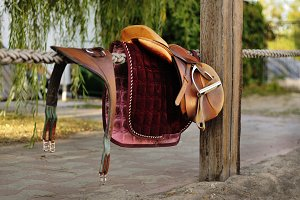 Brown riding equipment
