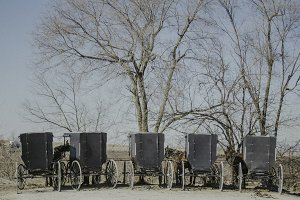 Amish Buggy Parking