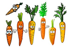 Funny orange ripe carrot vegetables