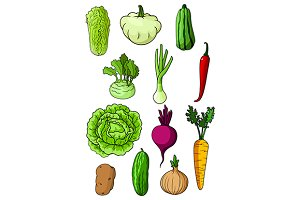 Fresh farm vegetables set