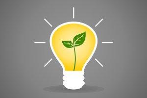 Plant a bulb