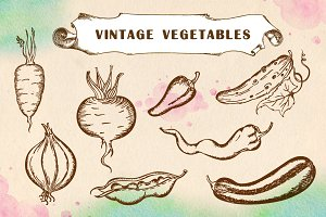 Set of vintage vegetables