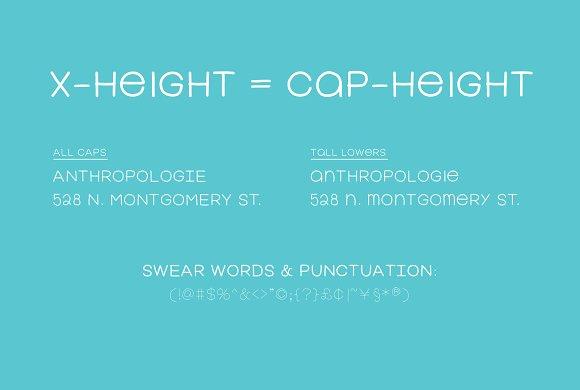 Fervent Sans [8 weights]