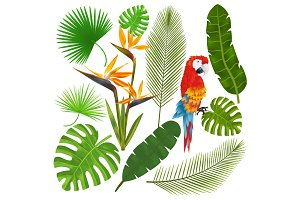 Tropical leaves, flowers and macaw