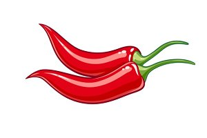Pair red chile pepper vector illustration eps10