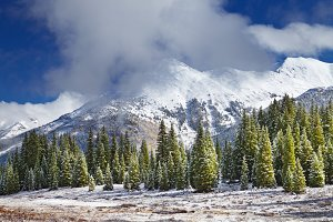 Snowy mountains and forest, Colorado