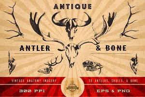 Antique Antler & Bone Graphics