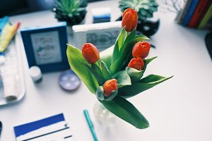 Tulips on a desk