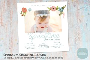 IE015 Spring Marketing Board