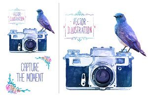 Vector watercolour camera with bird
