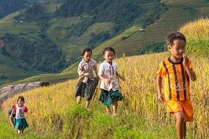 children are running in rice