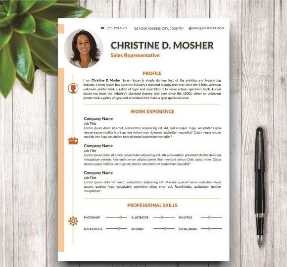 Professional Cv Resume Templates: Professional CV Template 4 Pages