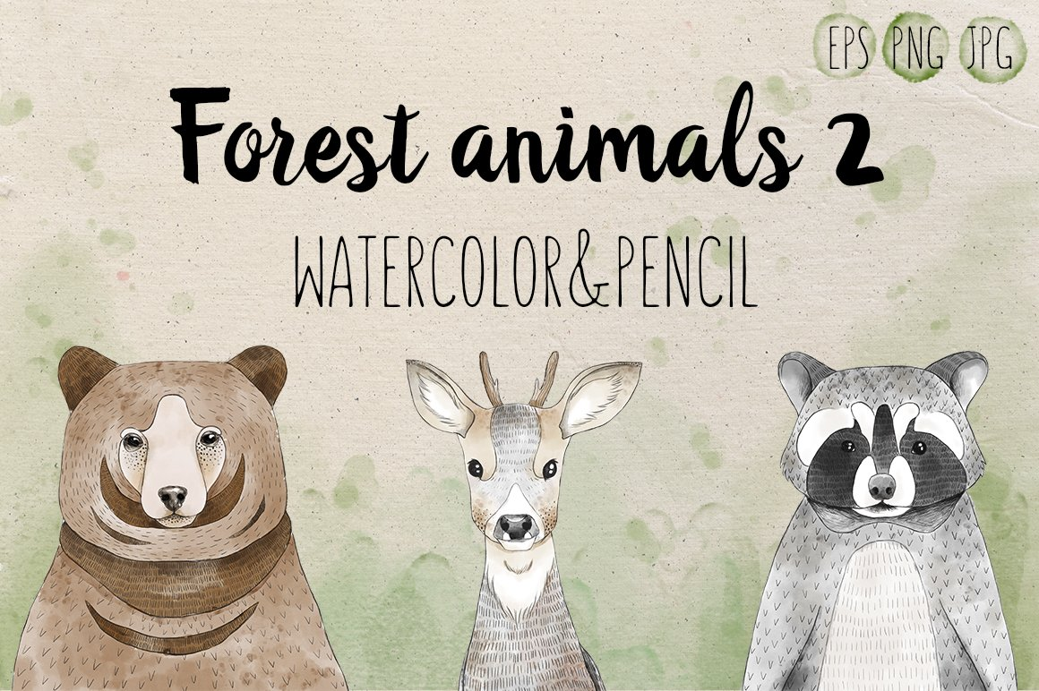Set of 3 forest animals vol2 illustrations creative market fandeluxe Choice Image