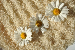 rice and daisies