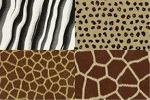 Vector animal fur textures
