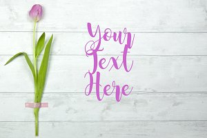 Pink Tulip Floral Styled Stock Photo