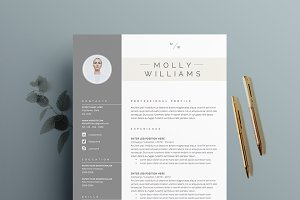 Resume Template 4 pages | Minerva