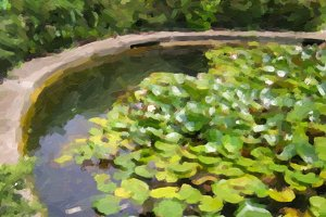 Retro look Water lily Nimphaea oil paint