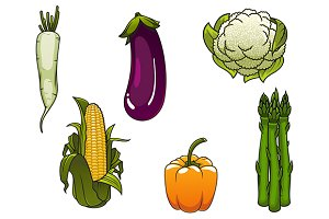 Healthy farm vegetables
