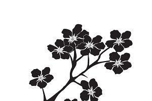 twig, cherry blossom, icon, vector