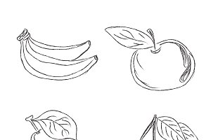 set of fruits in sketch style