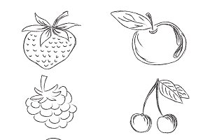 set of fruits in sketch style vector