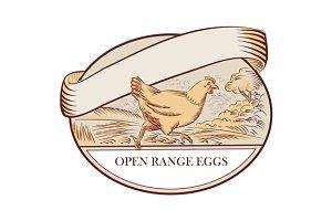 Hen Running Open Range Eggs Oval