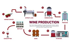Vector illustration of winemaking