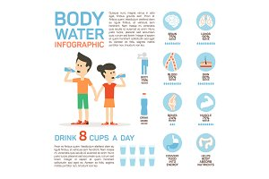 Flat vector body water infographic