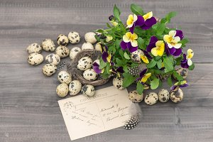 Easter decoration Pansy flowers
