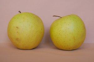 Yellow apple fruits