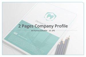 Minimal Company Profile - Flow