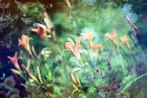 Vintage floral card. Orange lilies.