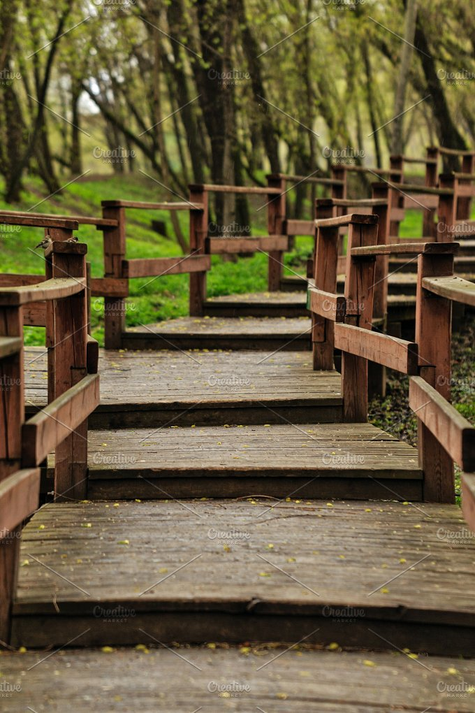 Wooden walkways in forest. Steps. - Nature