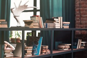 Books on wooden shelfs in the interior