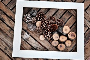 frame and dried pineapples