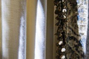 Sunlight on Drapes (Photo)