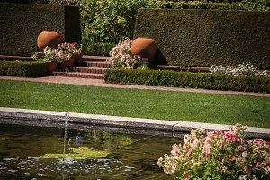 Estate Fountain and Hedges (Photo)