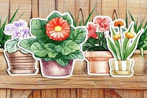 Flower pot set